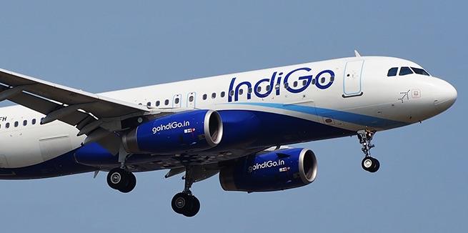 IndiGo Airlines Flight Information